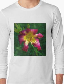 Raspberry and gold daylily flower - Hemerocallis 'Liberty Banner' Long Sleeve T-Shirt