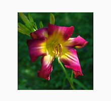Raspberry and gold daylily flower - Hemerocallis 'Liberty Banner' Unisex T-Shirt