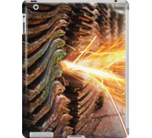 Biedermann iPad Case/Skin