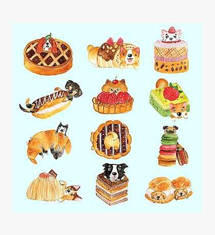Puppy Pastries Photographic Print