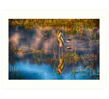 Bird in a Lake Art Print