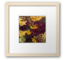 Bloom. Framed Print