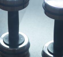 Dumbbell gym metal weights in gym health club Sticker
