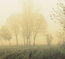 fields in the fog in winter Sticker