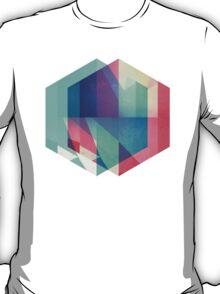 hyx^gyn T-Shirt