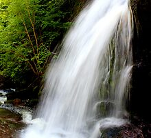 Fuller Falls III by Kathleen Daley