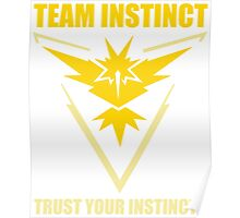 Pokemon Go - Team Instinct with Motto Poster