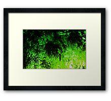 Green Medley Framed Print