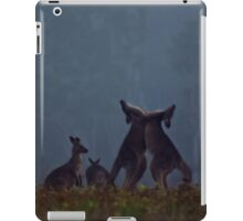 Boxing Kangaroos in farmland near Maclean iPad Case/Skin