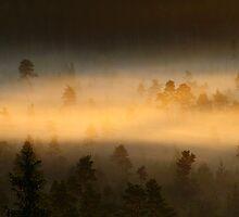5.7.2014: When Light Is Born I by Petri Volanen