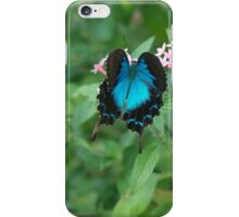 Butterfly Blue iPhone Case/Skin