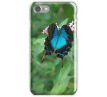 Butterfly Blue iPhone Case/Skin