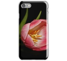 Pink Two Tone Tulip iPhone Case/Skin