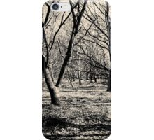 The Autumn Common iPhone Case/Skin