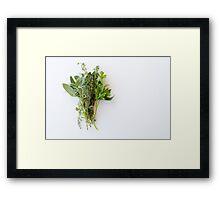 Fresh herbs on white table Framed Print