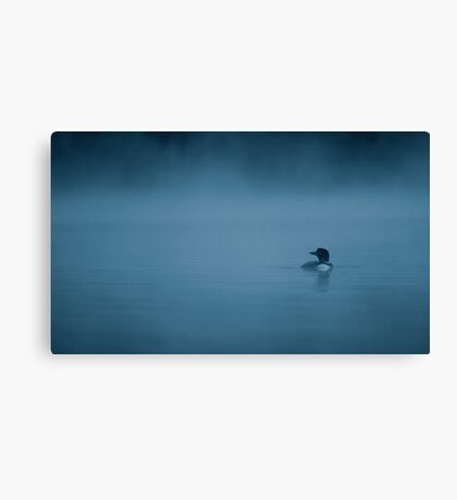 Common loon in blue fog Canvas Print