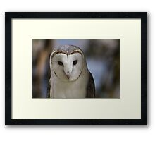 The Mystery! Framed Print