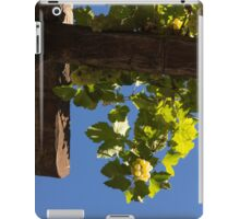 Harvest in the Sky - a Vertical View iPad Case/Skin