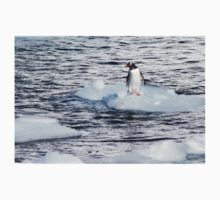 Gentoo penguins (Pygoscelis papua) on Danco Island  One Piece - Long Sleeve
