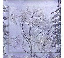Idaho Falls - Purple Snow Photographic Print