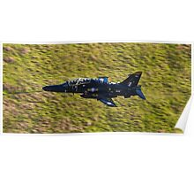 T2 Hawk Poster