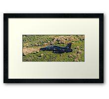 T2 Hawk Framed Print