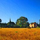 Provence Landscape by jean-louis bouzou