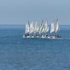Seven sails set. by Paul Pasco