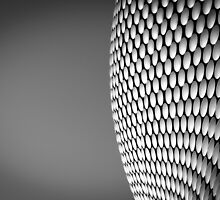 Birmingham Selfridges Building 2 by RossJukesPhoto