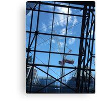 Crane Through Glass Canvas Print