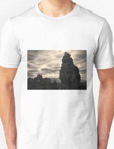 Arches NP IX Toned Unisex T-Shirt
