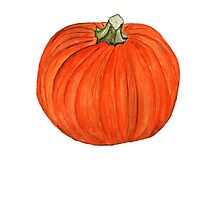 Pumpkin  by Anne Gitto