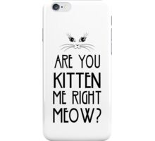 Are You Kitten Me Right Meow? iPhone Case/Skin