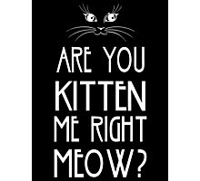 Are You Kitten Me Right Meow? Photographic Print