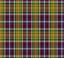 02105 City of Williams Lake District Tartan  by Detnecs2013