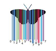 cute and cool modern butterfly design Photographic Print
