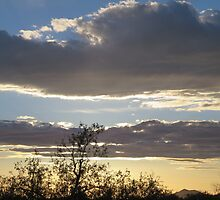 Sleeping under the sky by Randomshots68