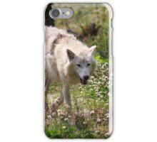 On the Run - Hudson Bay Wolf iPhone Case/Skin
