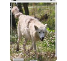 On the Run - Hudson Bay Wolf iPad Case/Skin
