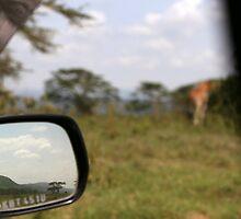 While watching a giraffe in Lake Nakuru by lunaencantada