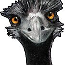 Wild-Eyed Emu: Original Pastel Art: Wildlife, by Joyce Geleynse