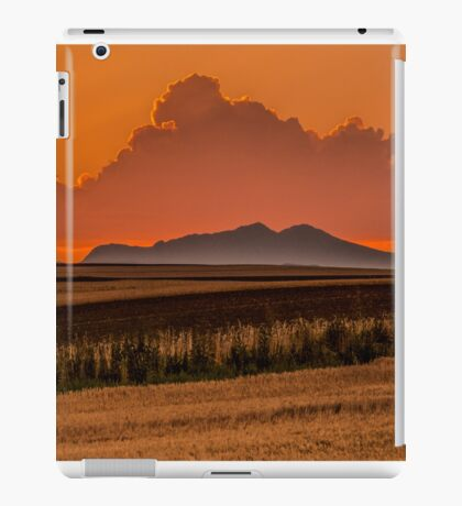 Wild Dragon Sunset iPad Case/Skin