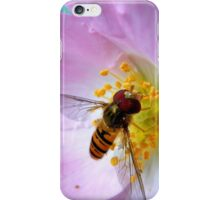 Pink Insect iPhone Case/Skin