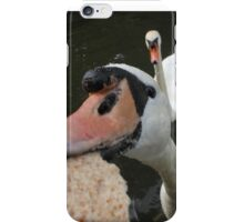 Hungry Swan iPhone Case/Skin