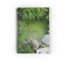 The Pond at 615 Green Spiral Notebook