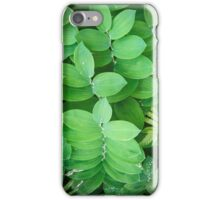 World of Leaves II iPhone Case/Skin