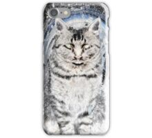 Purrfect Storm iPhone Case/Skin