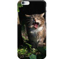 Tabby cat yawning in garden iPhone Case/Skin