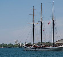 The Empire Sandy at Toronto's 2016 Waterfront Festival by Gerda Grice
