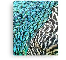 Shimmer and Scales Canvas Print
